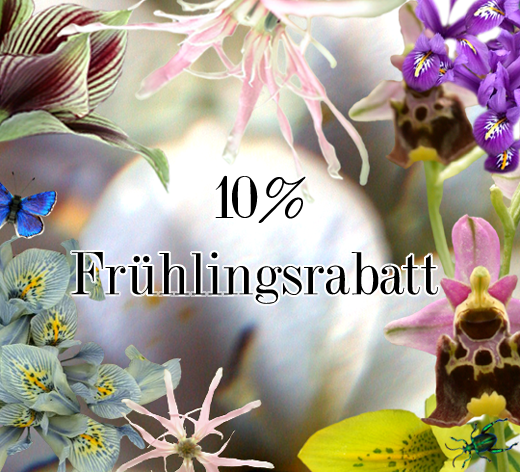 2013_3_26_10 Prozent Frühlingsrabatt