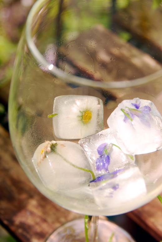 spring on the rocks_im glas